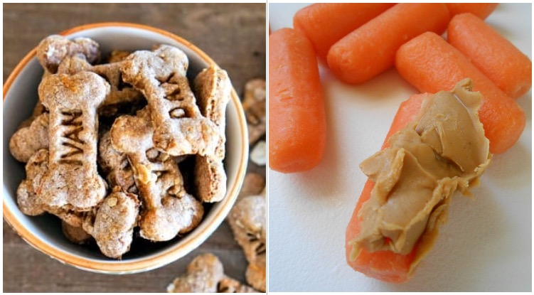 Homemade dog treats made from peanut butter and carrots