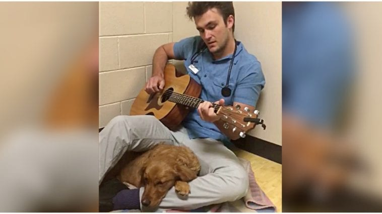 Vet singing and playing guitar for golden retriever