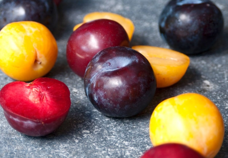 Picture of plums in order to answer the question what fruits can dogs eat