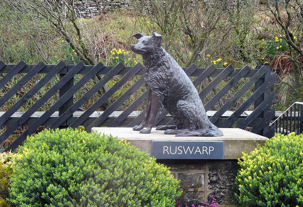 Statue of Ruswarp at Garsdale Station. Ruswarp is one of the greatest examples why we must love dogs