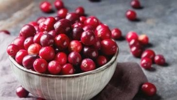 A picture of cranberries in order to answer can dogs have cranberries