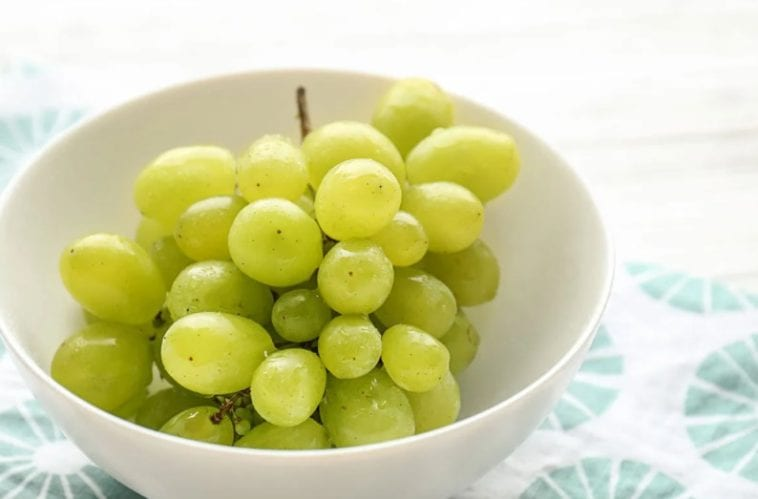 A picture of a bowl of grapes in order to anwer are grapes toxic to dogs?