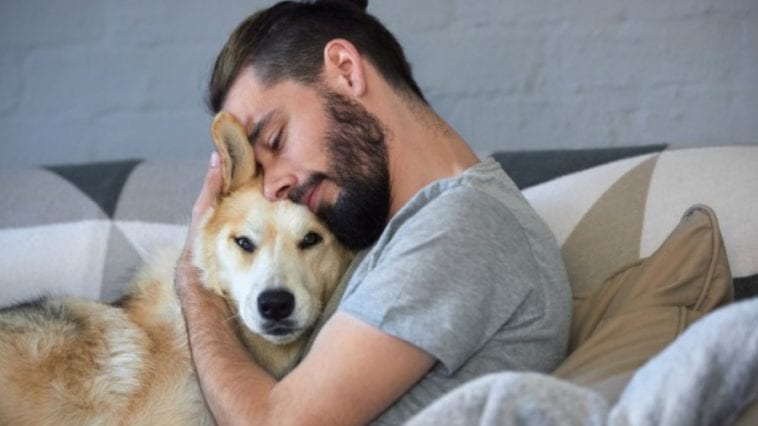 Man hugging a dog in order to answer the question do dogs like hugs?