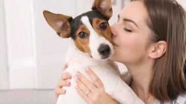 Picture of a woman kissing a dog in order to answer do dogs like kisses