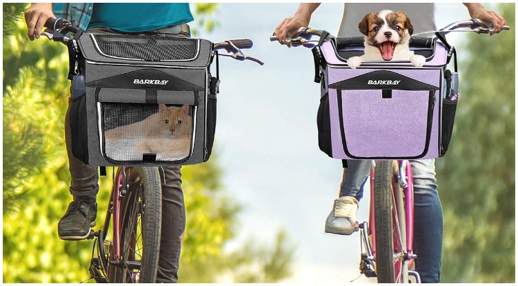 Dog owners carry their pets in dog carrier for bike