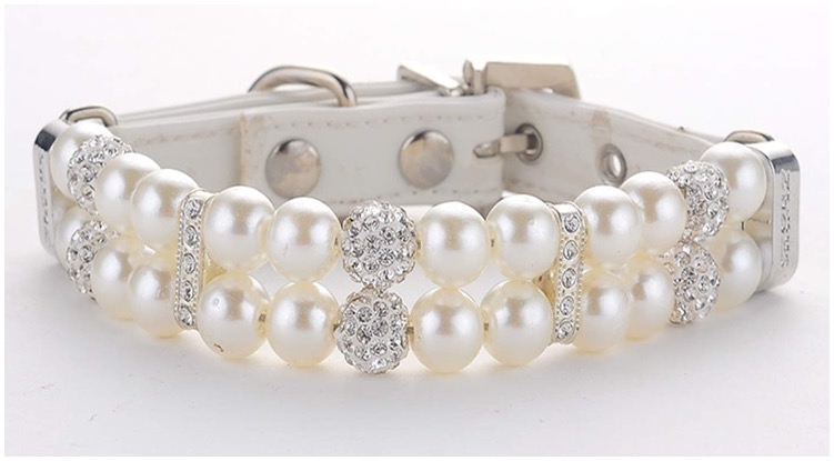 Fancy canine collar from Amazon made from fake diamonds and pearls