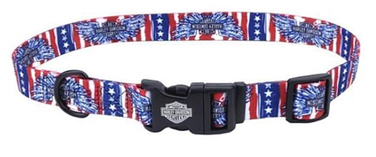 Canine collar in the colors of the American flag