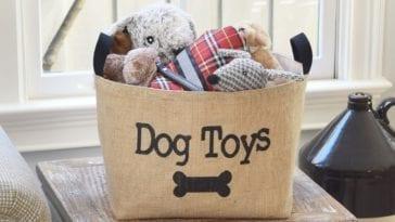 dog toy basket