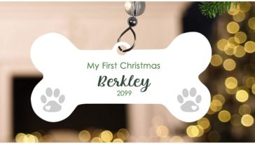 A beautiful ornament hanging on a trea being the dog's first Christmas ornament
