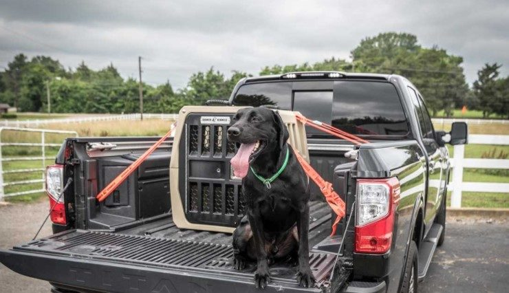 truck bed dog kennel