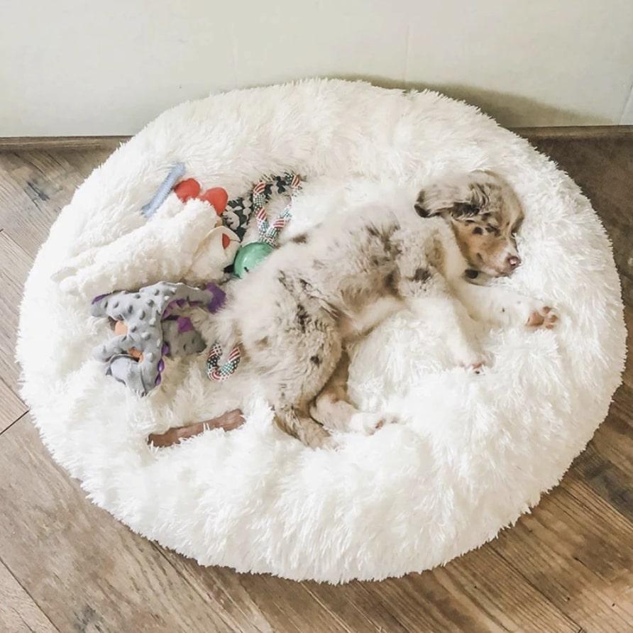 nest dog bed